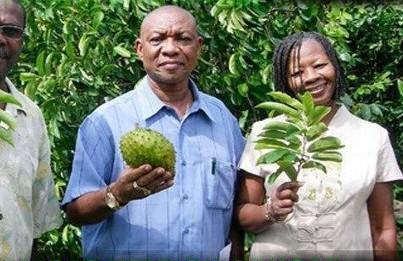 Soursop Fruit Cure