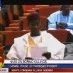 Video: Senate Tasks Committee To Investigate Baga Carnage