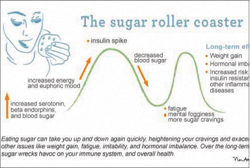 the-bitter-truth-about-sugar