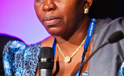 Mrs. Sarah Reng Ochekpe, Minister of Water Resources