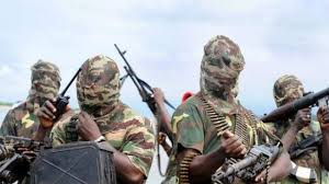 Hunger Forces Boko Haram to Kill Three, Demand N1 Million From Traders