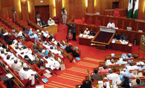 Nigerian Senate to investigate security force killings in Abuja
