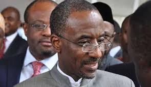 Sanusi Bracing for Shocks to Nigeria's Fiscal Spending