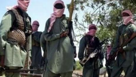 US Nigeria vs boko Haram