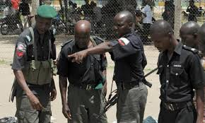 The European Union Election Observation Mission has asked the Nigeria Police Force to give a safe environment for the fulfillment of the approaching general elections.