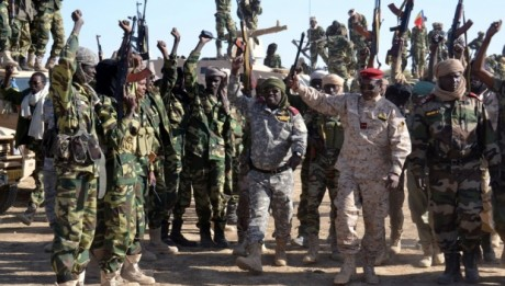 Chad, Niger start joint offensive against Boko Haram in Nigeria