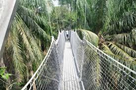 Lagos unveils Africa's longest canopy walkway
