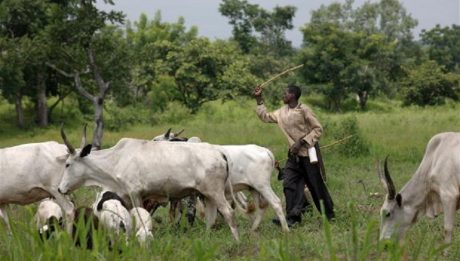 Grazing Re­serve Bill
