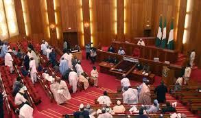Nigerian Senate Passes Bill Establishing North East Development Commission