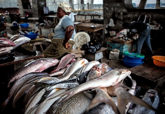 Hope for nigeria recession prices of food soar higher as for Fish market prices