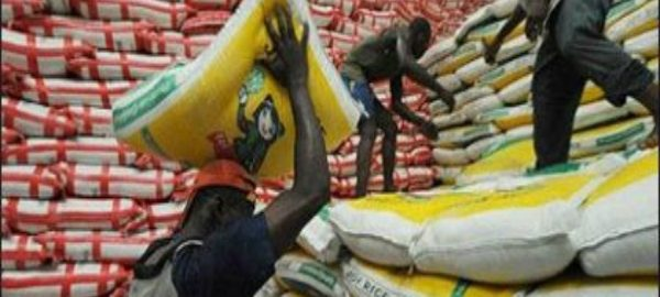 Nigeria To Start Exporting Rice