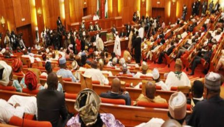 Nigerian Senate Gives INEC Dec 10 Ultimatum For Rivers Re-run Polls