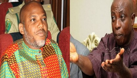 Uwazuruike To IPOB: You Are A Toothless Bulldog