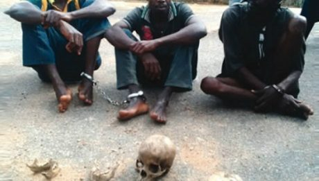 Human Skull Dealer Gets 6-Year Imprisonment In Ibadan
