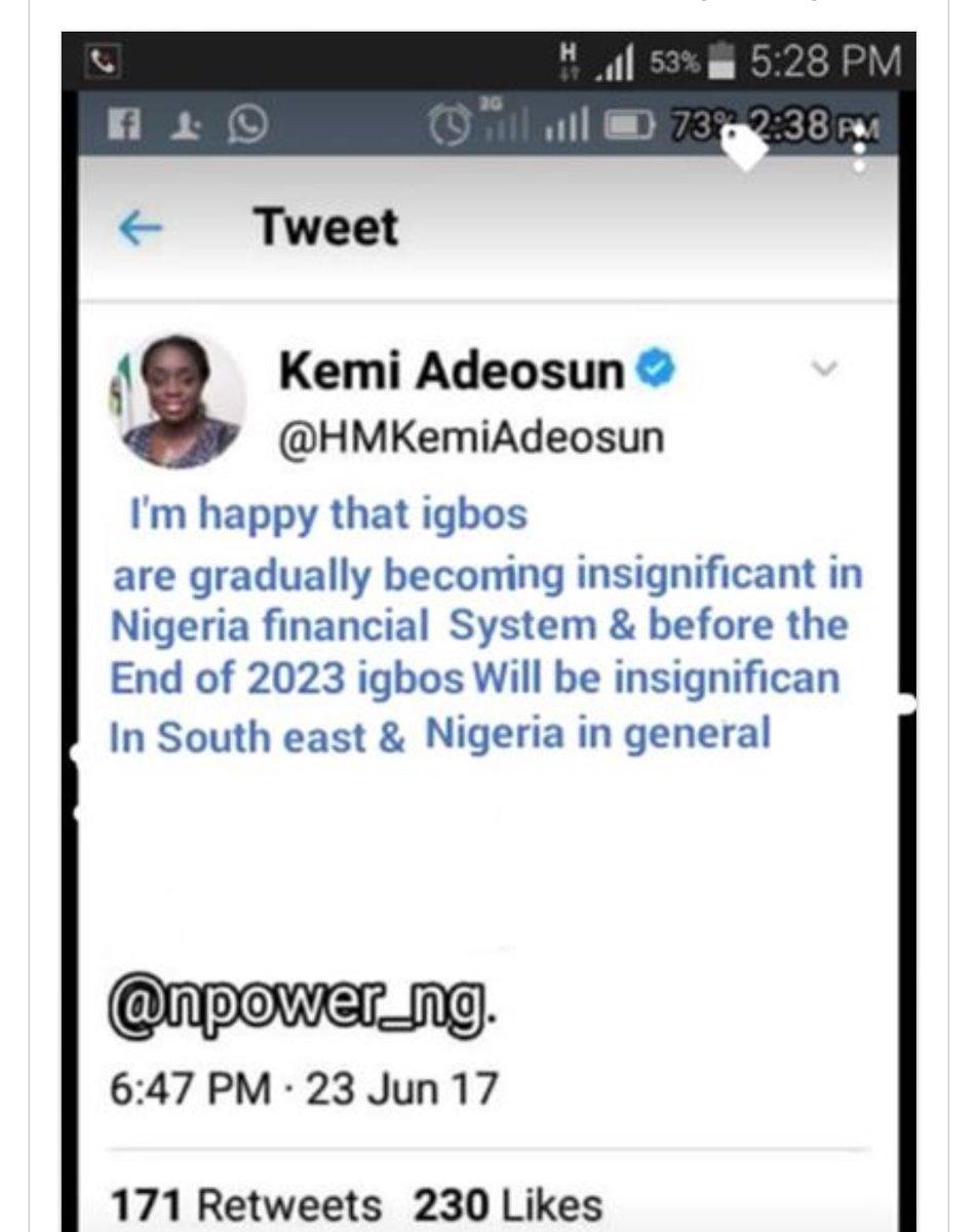 Finance Minister, Adeosun denies insulting Igbo