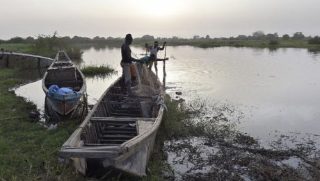 Boko Haram kills 31 fishermen in Borno
