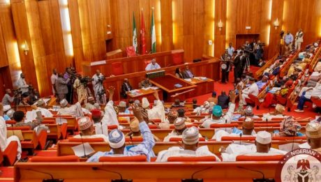 Senate to Nigerians: Judge us by facts, not sentiments