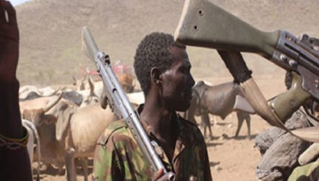 Police, cattle rustlers exchange bullets in Katsina