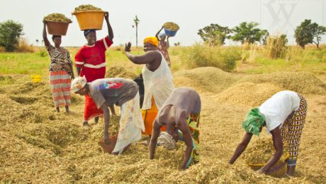 Buhari orders single digit interest rate for agric loans