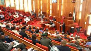 Senate names new chair for minimum wage committee, begins budget debate