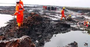 Ogoni Clean–up