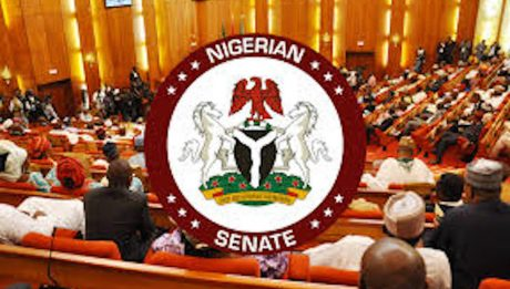 Five Senators-elect Jostle For Deputy Senate President