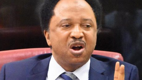 Shehu Sani Reacts To Ganduje's Plan To Depose Emir Sanusi