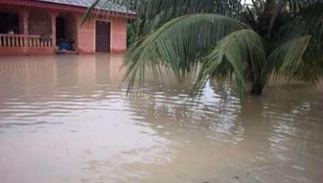 Flood Sacks Ugwueke