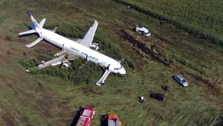 Plane Crash Landed In Cornfield