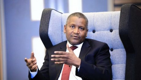 Dangote's Multi-billion Naira Greenhouse Farm
