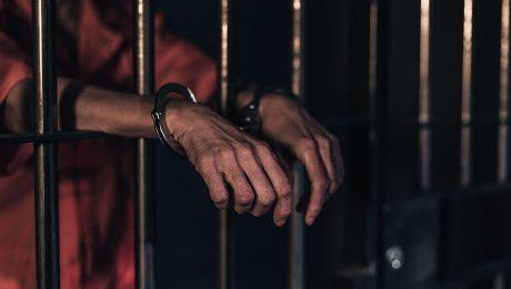 29 Inmates
