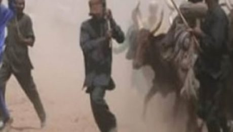 Herdsmen Attack In Edo