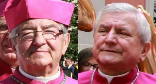 Two Catholic Bishops Sanctioned Over Sexual Abuse