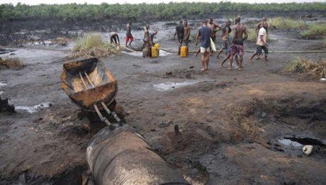 livelihoods for Ogoni people