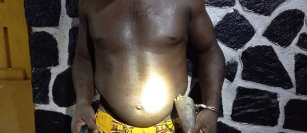 Lagos Police Arrest Two Suspected Armed Robbers