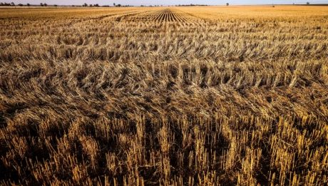 World food prices continue to soar