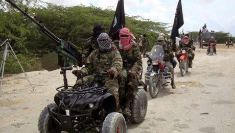 Terrorists kill seven, displace 5,000 in Adamawa