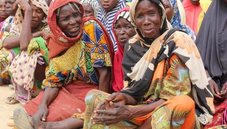 Insurgency has killed 'almost 350,000 in North-east'