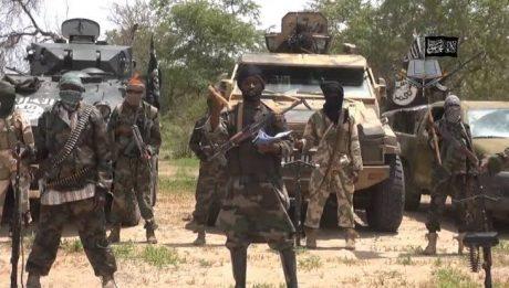 Boko Haram Attacks Adamawa Villages, Many Killed