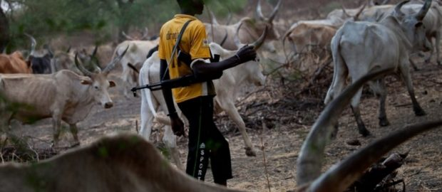 Southern Kaduna: Herdsmen Kill 100 People In Six Days