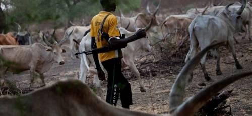 Herdsmen Kill Five Farmers In Nasarawa