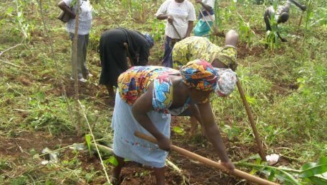 NGO charges government on agricultural supports